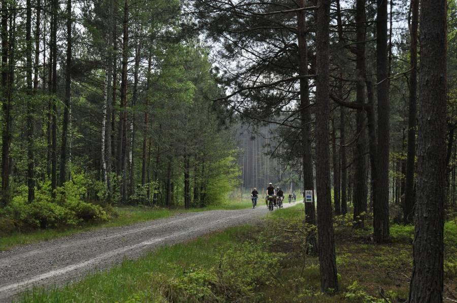 Leśna Trasa Rowerowa z Janowa Lubelskiego do Szklarni